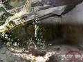 14.08.16_Longues sur Mer_Site de la Batterie_11-w1024-h768