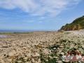 14.08.16_Longues sur Mer_Site de la Batterie_121-w1024-h768
