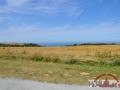 14.08.16_Longues sur Mer_Site de la Batterie_30-w1024-h768