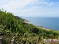 14.08.16_Longues sur Mer_Site de la Batterie_84-w1024-h768