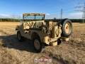 Willys in the field_22.08.18