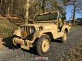 Willys in the sun_February 07th, 2020