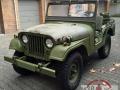 1961 Willys Jeep M38A1 (Dänische Armee) von Karl und Marcel Trost (Frankfurt a. Main)